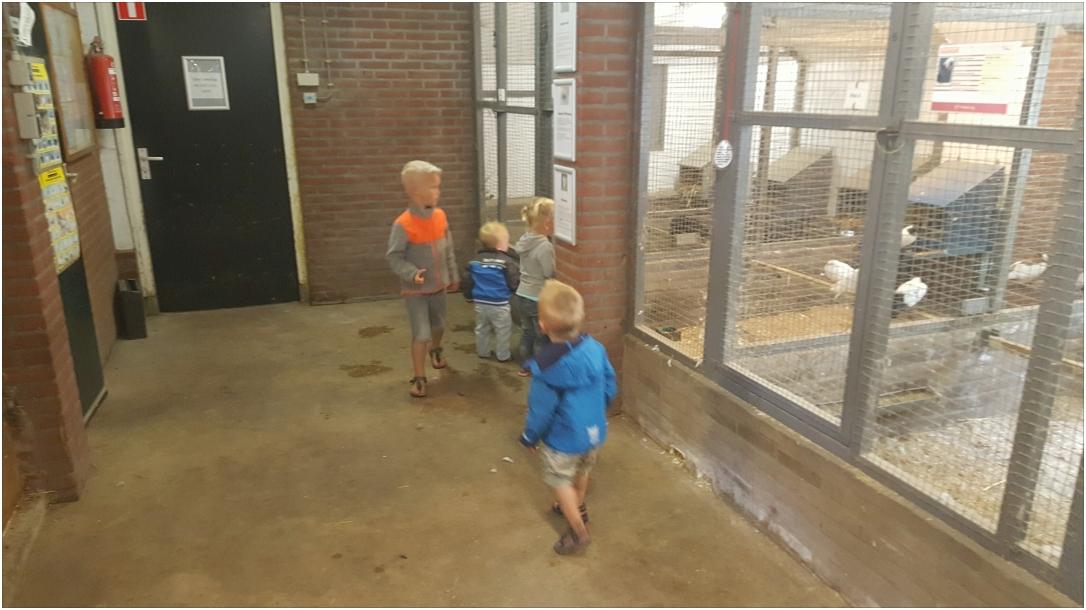 Bezoek aan de kinderboerderij